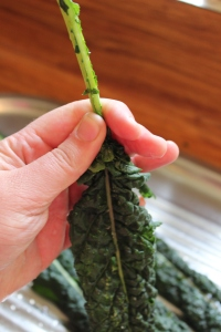 Run your fingers down the steam of the kale to remove the leaf.