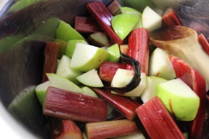 Add prepared rhubarb and apple to vanilla sugar syrup.