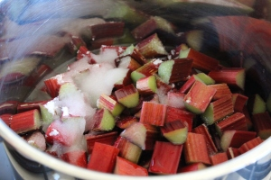 Add rhubarb, sugar, vanilla bean and water to pot.